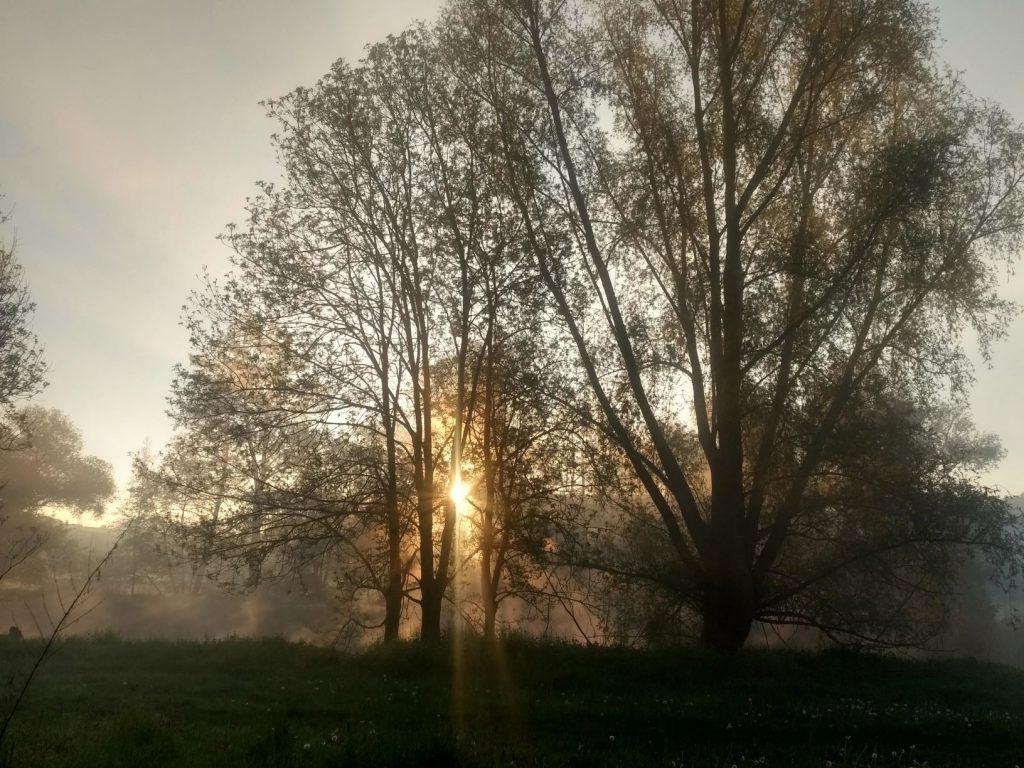 Nebel weg
