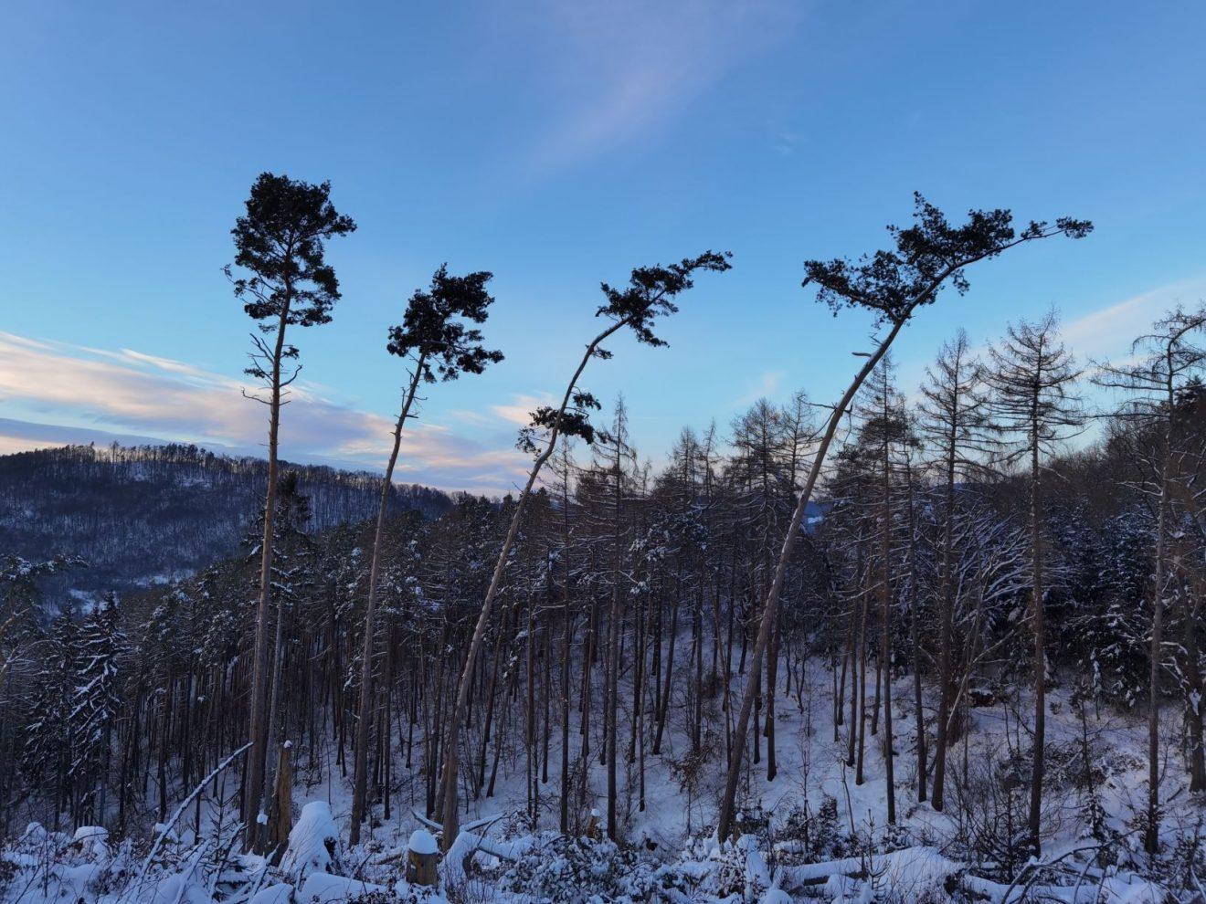 Werra-Meißner-Kreis im Winter