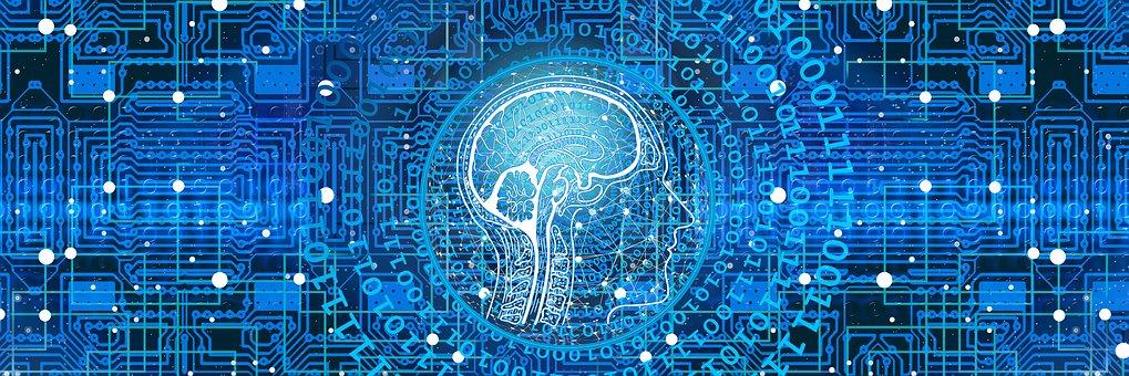 Das menschliche Gehirn während des Konsums von Nachrichten.