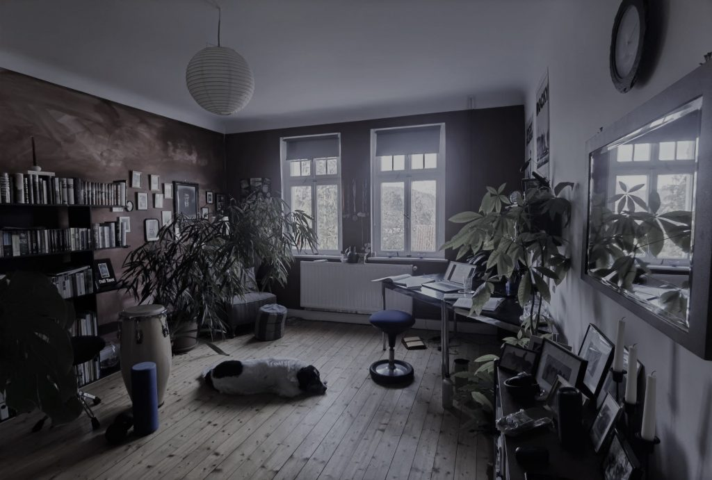 Ein Raum mit Fenster, einem Bücherregal, vielen Pflanzen und einem Schreibtisch. Auf dem Fußboden liegt ein großer Hund.