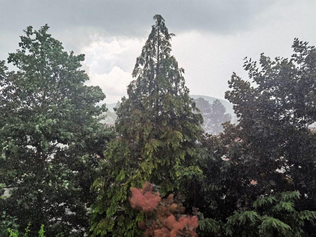 Es sind einige Bäume zu sehen, große Regentropfen und dicke, graue Wolken. Das Wetter zum Monatsrückblick Juni 2021.