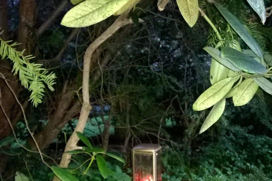 Eine kleine Grabkerze zwischen grünen Pflanzen - auch das Schmücken einer Grabstätte gehört zu den Trauerphasen.